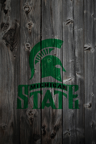 Michigan State Spartans Wood iPhone 4 Background Flickr   Photo 333x500