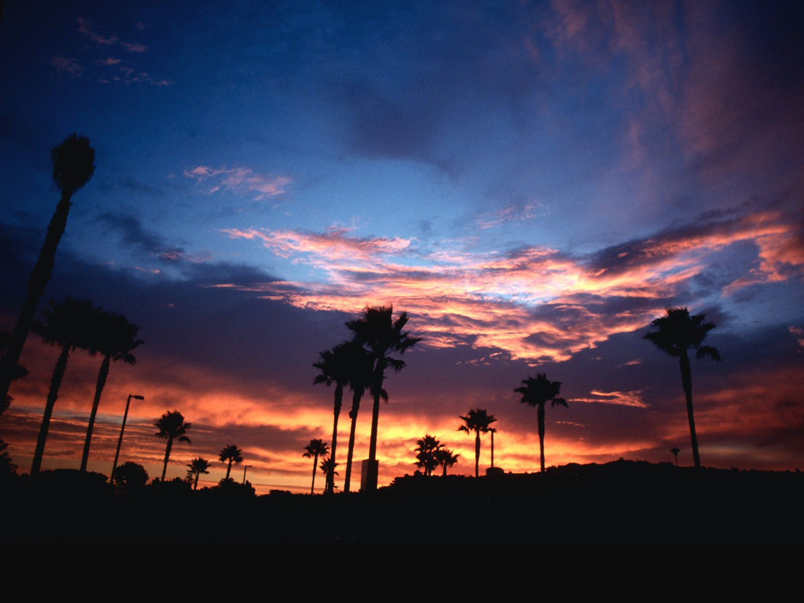 Best 52 California Backgrounds on HipWallpaper Evolution Valley 1600x1200