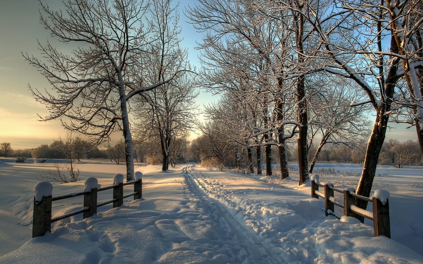 Winter achtergrond met een besneeuwde weg HD winter wallpaper 1600x1000