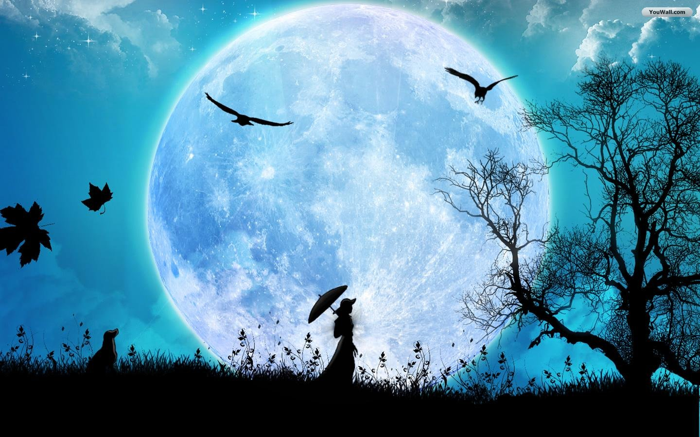 cool wallpapers Full moon Wallpapers 1440x900