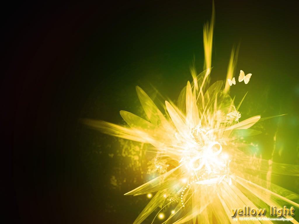 Light Yellow Background PelautsCom 1024x768