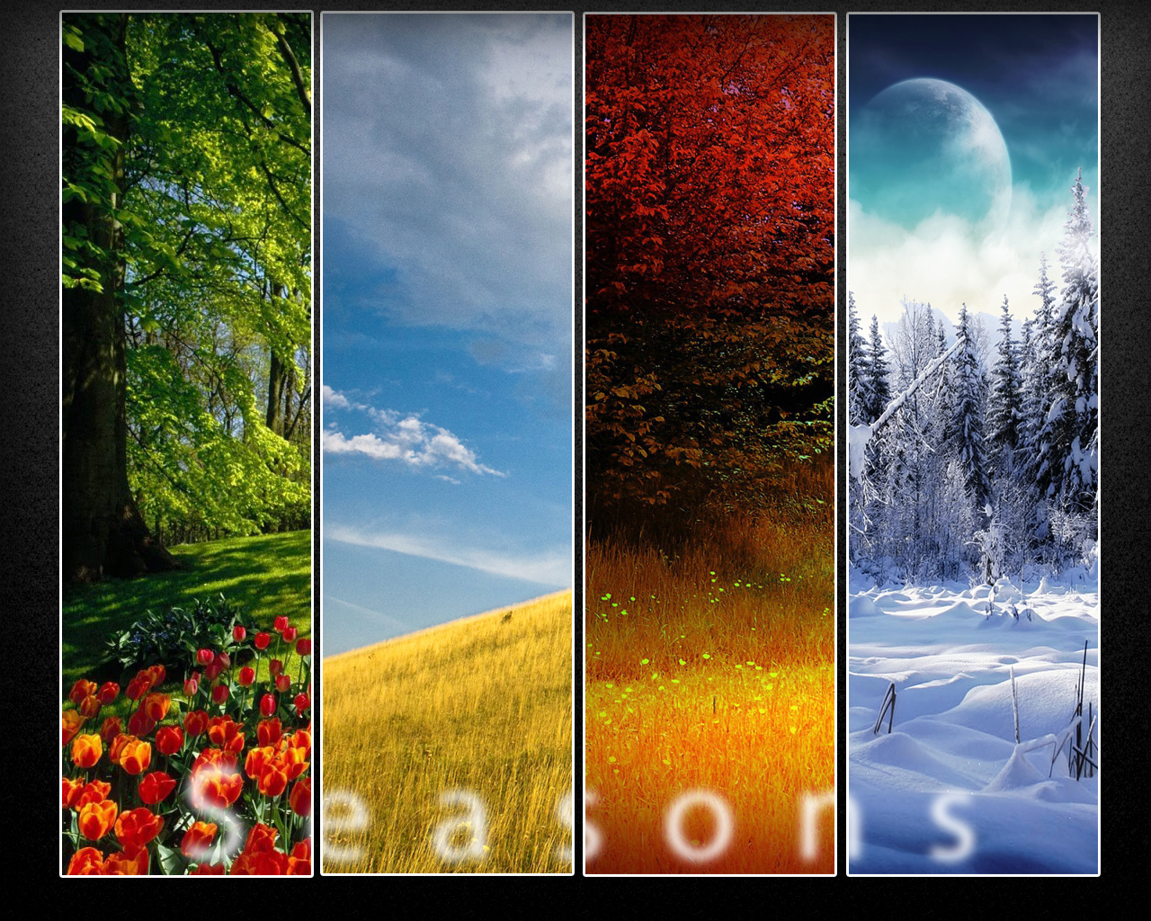 seasons wallpaper by dranton17 customization wallpaper landscapes 1280x1024