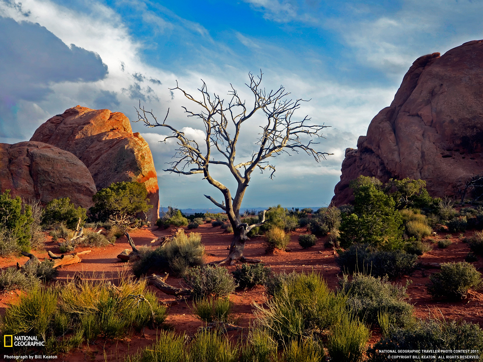 Arches National Park Picture Travel Wallpaper   National 1600x1200