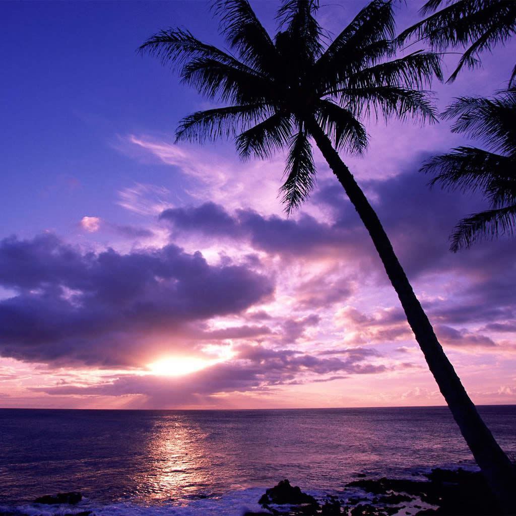 Ipad Sunset Wallpapers for windows Desktop Backgrounds Ipad Sunset 1024x1024
