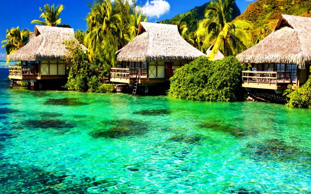 beach scene desktop wallpaper green nature beach | wallpapers55.com ...