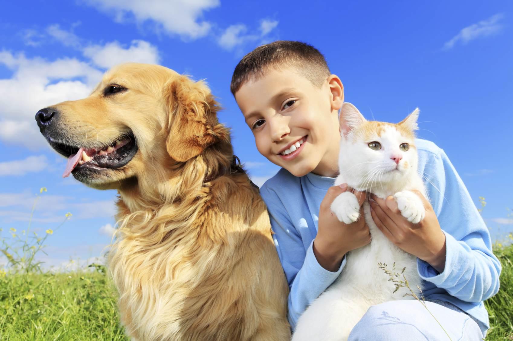 Cat and Dog Desktop Wallpaper 1698x1131