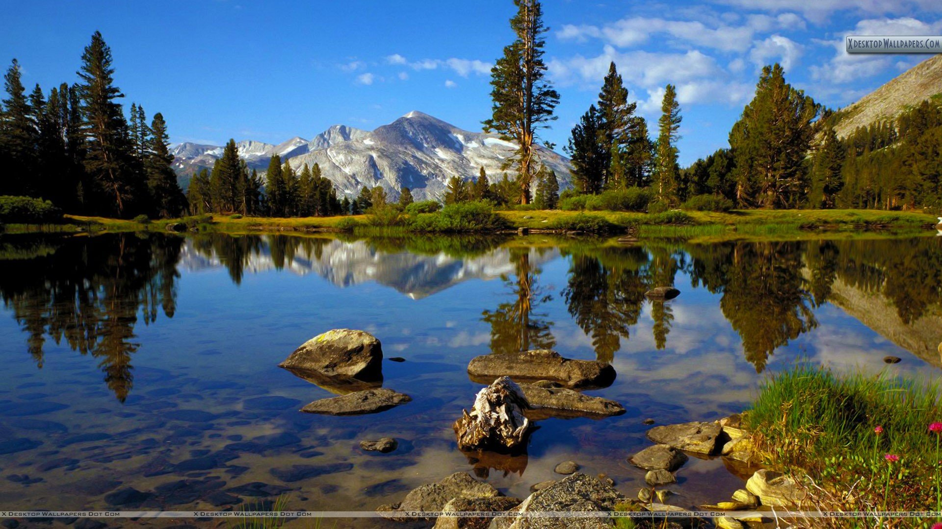 Country Near Tioga Pass Yosemite National Park California Wallpaper 1920x1080