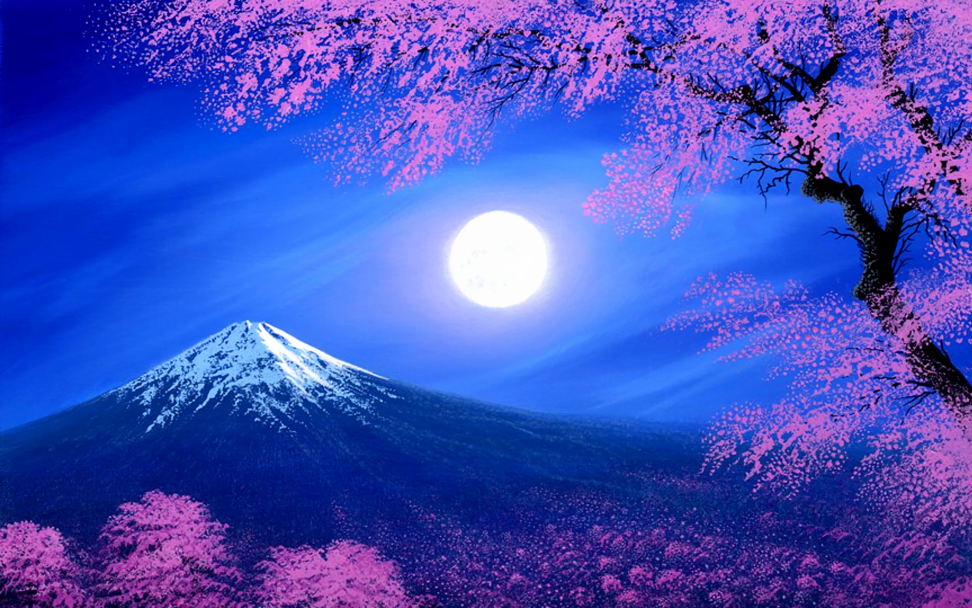 81 Mount Fuji HD Wallpapers Background Images 1920x1200