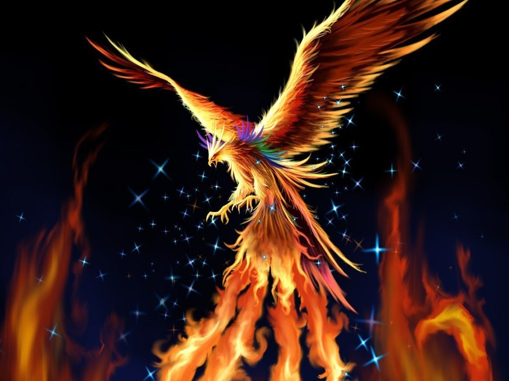 Phoenix   Fantasy Wallpaper 17884366 1024x768