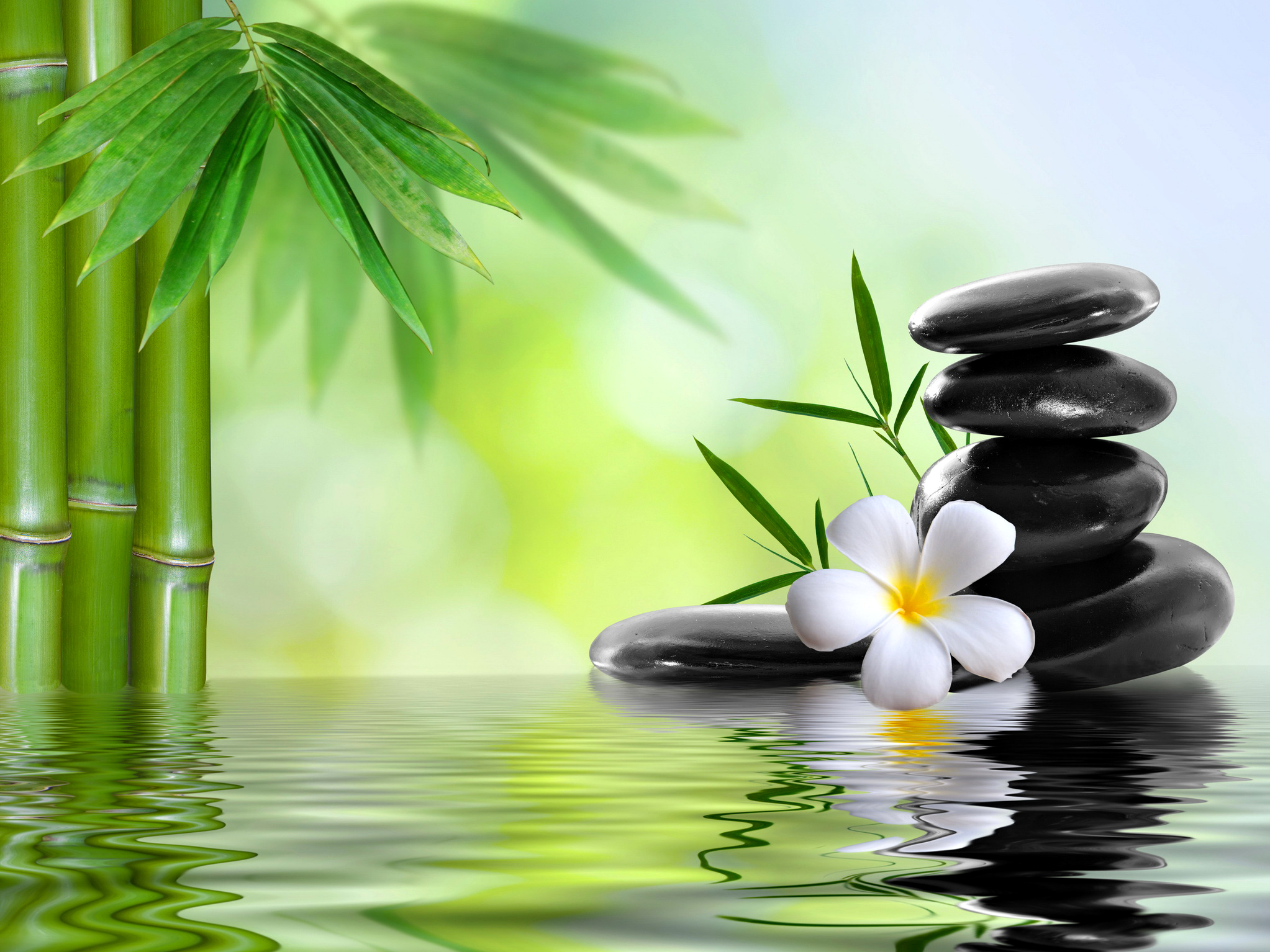 Wallpaper spa spa stones flower bamboo water wallpapers 2045x1534