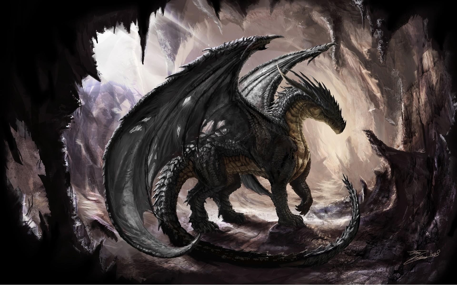 76 Black Dragon Wallpaper On Wallpapersafari