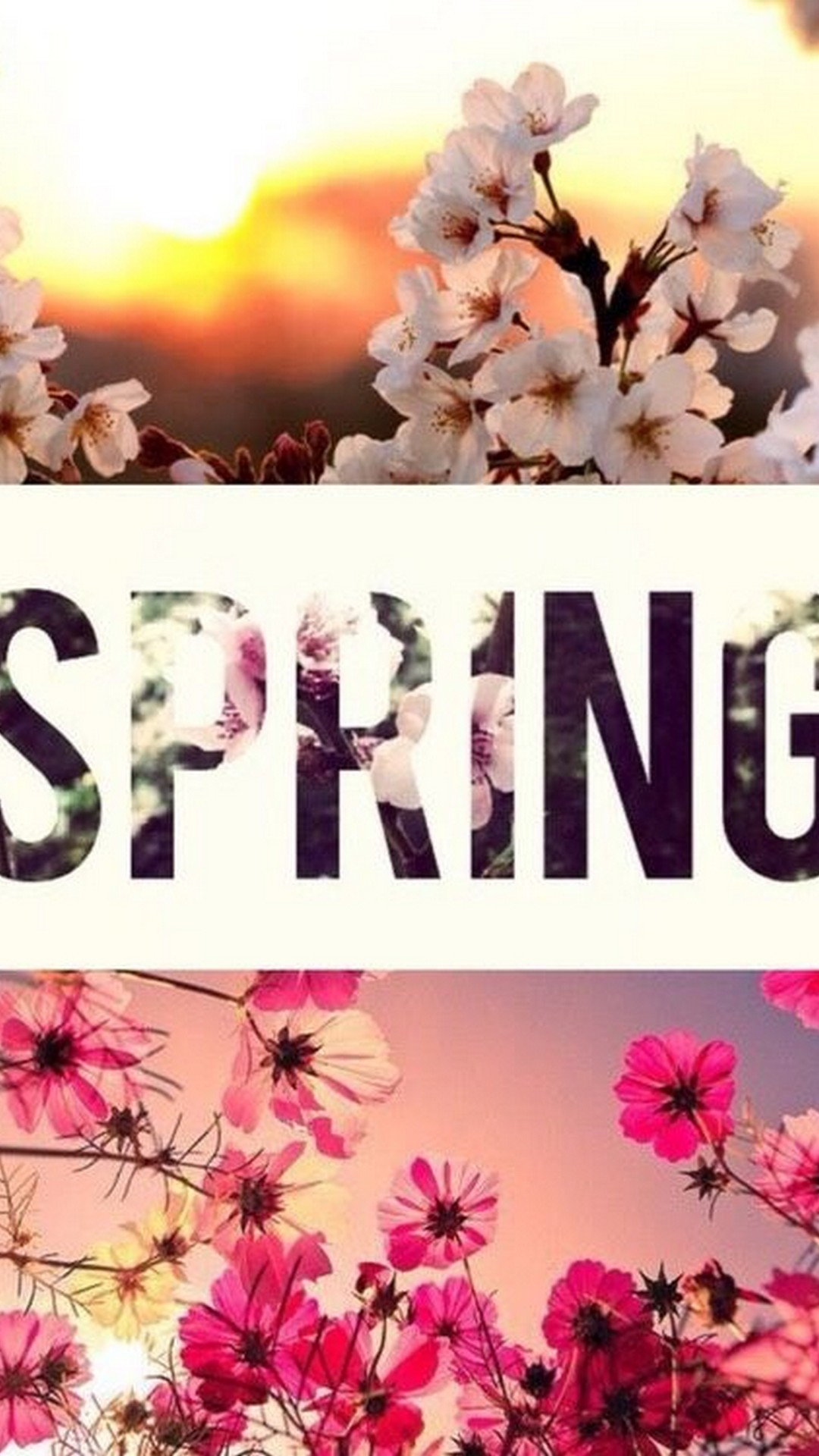 Wallpaper Hello Spring Android   2020 Android Wallpapers 1080x1920