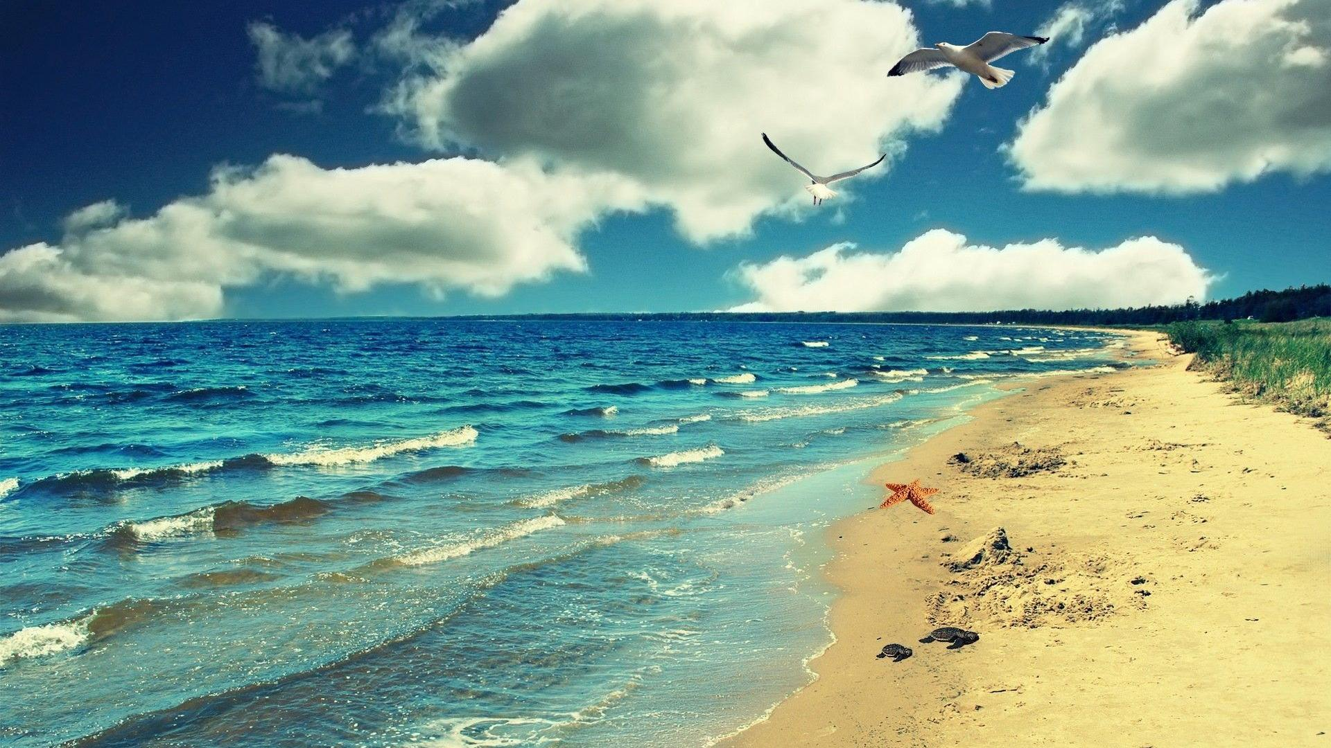 Free Download Hd Beach Wallpapers 1080p With 19201080 Pixel Wide