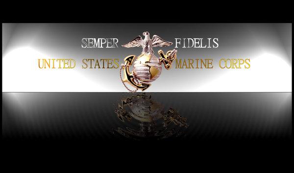 USMC Desktop Silver Themed by blameworthytragedies 600x354