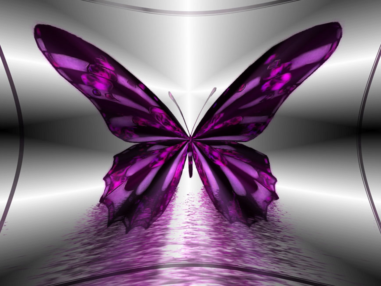 Wallpapers   HD Desktop Wallpapers Online Butterfly 1600x1200