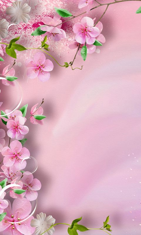 25 best ideas about Spring Flowers Wallpaper 480x800