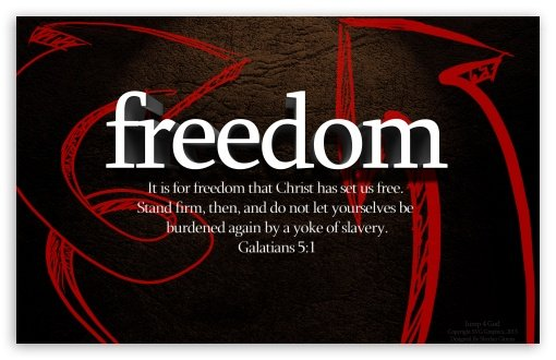 Freedom wallpaper 510x330
