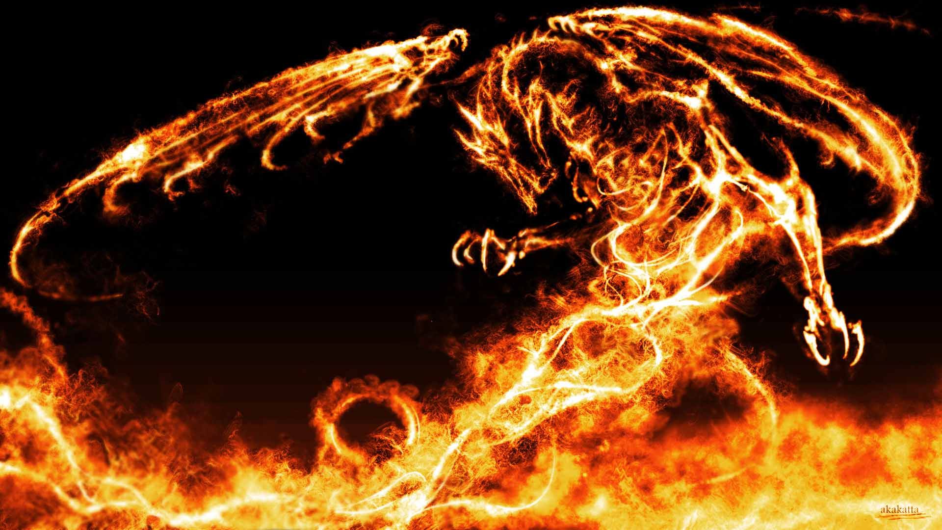 Dragon Fire Awesome Wallpapers 9931   Amazing Wallpaperz 1920x1080