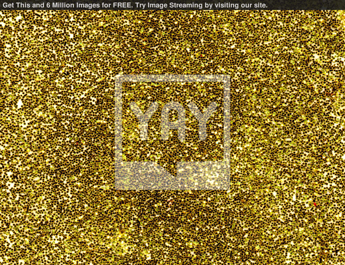 Royalty Image Macro Close Gold Glitter Background 1210x930