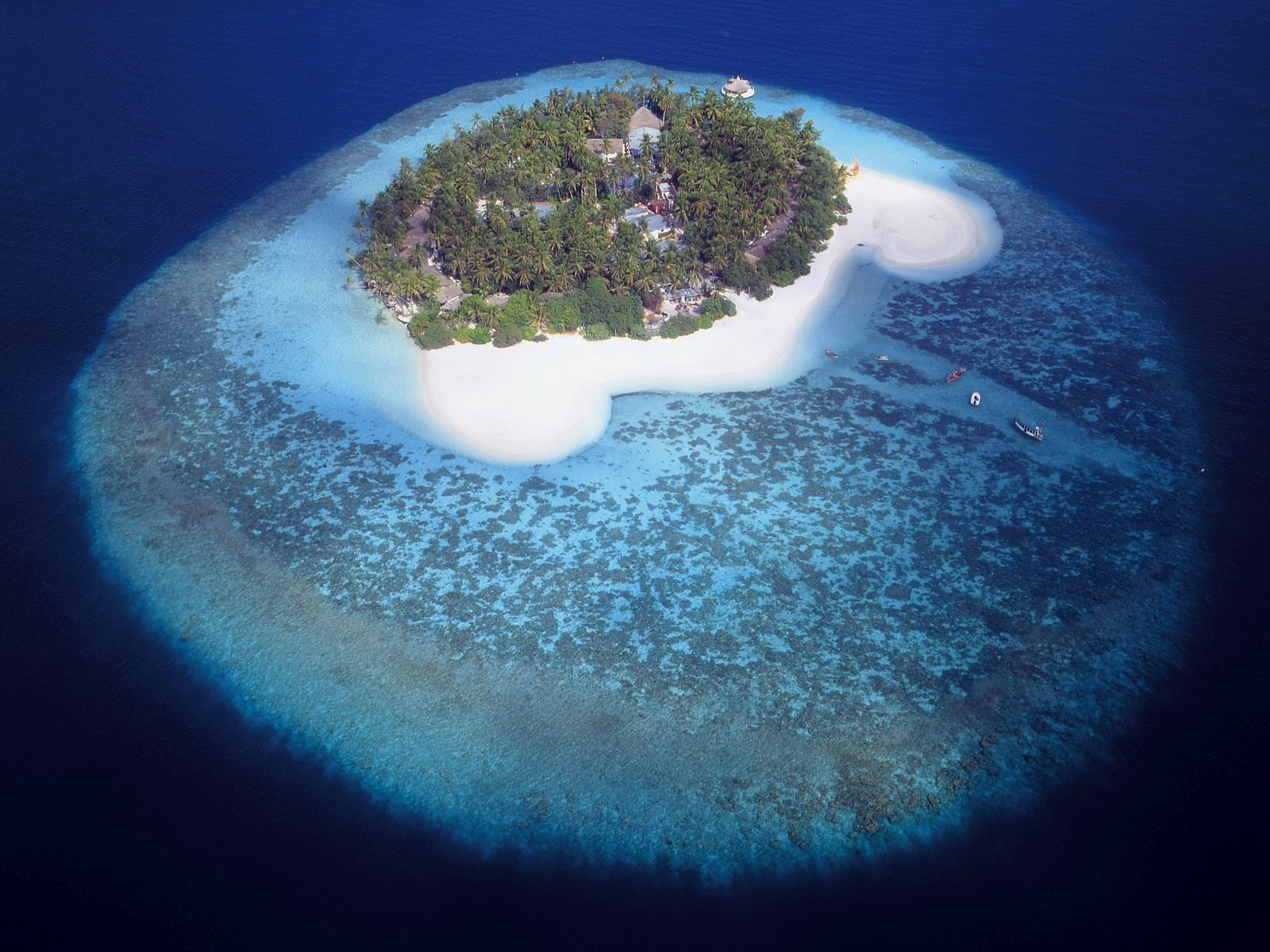 FULL WALLPAPER tropical island wallpaper 1600x1200