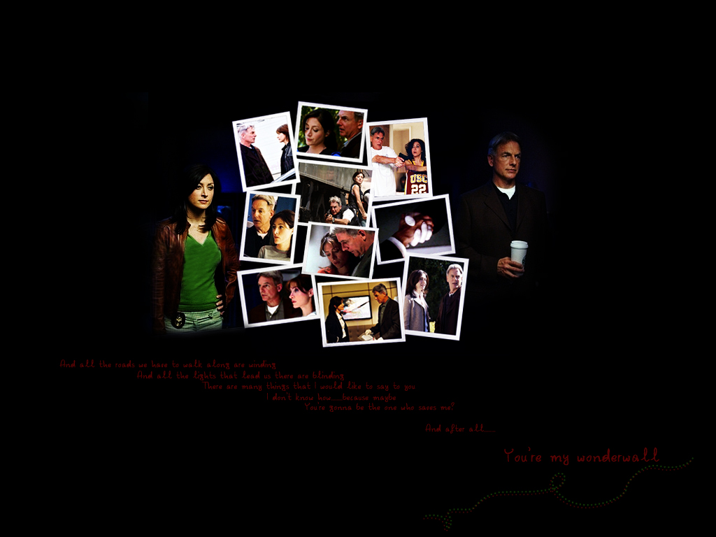 Ncis Wallpaper Related Keywords Suggestions   Ncis Wallpaper Long 1024x768