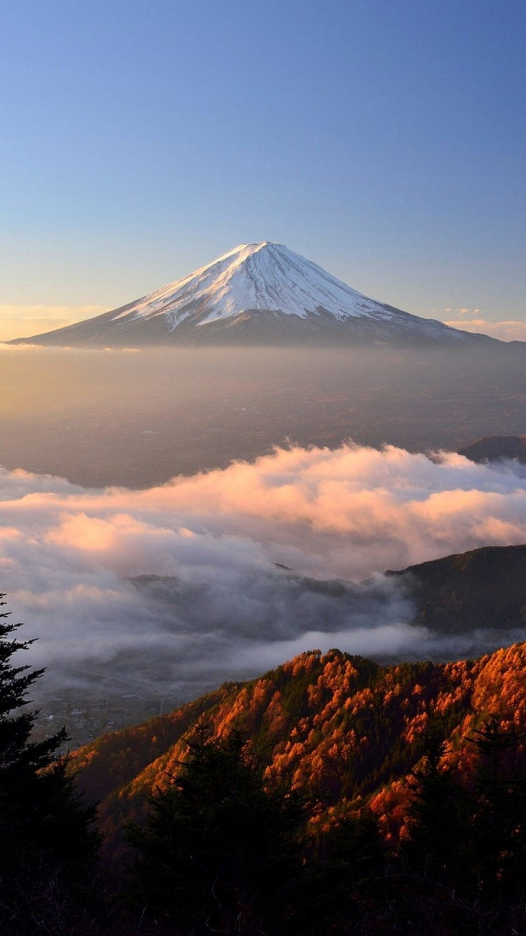 download Mount Fuji Hd Qhd Wallpaper [1080x1920] [1080x1920 1080x1920