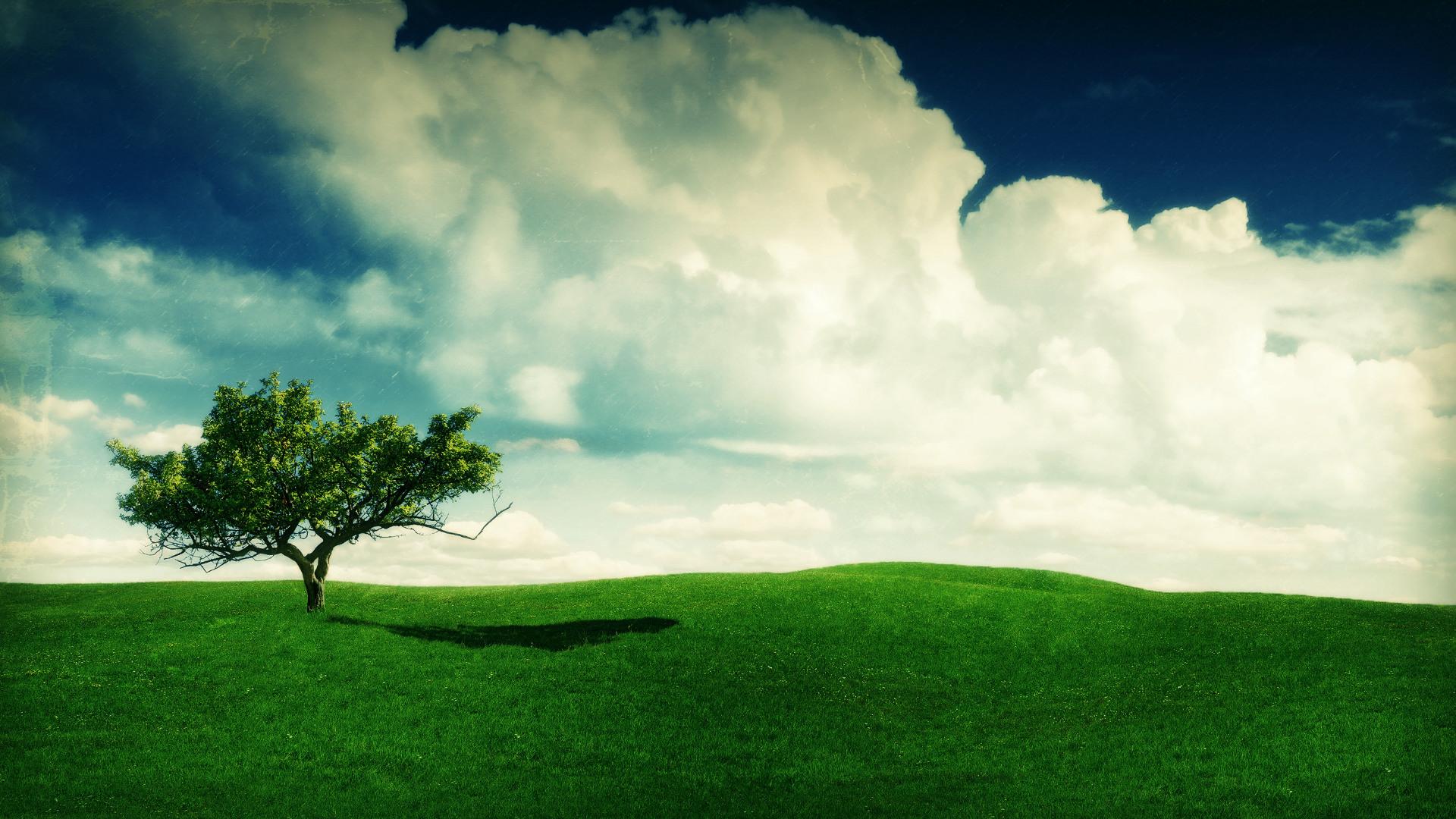 summer landscape image wallpaper - photo #39