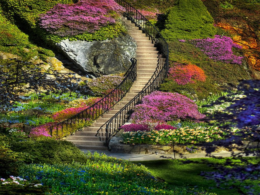 My Amazing Things Blog Beautiful flower garden photos 1024x768