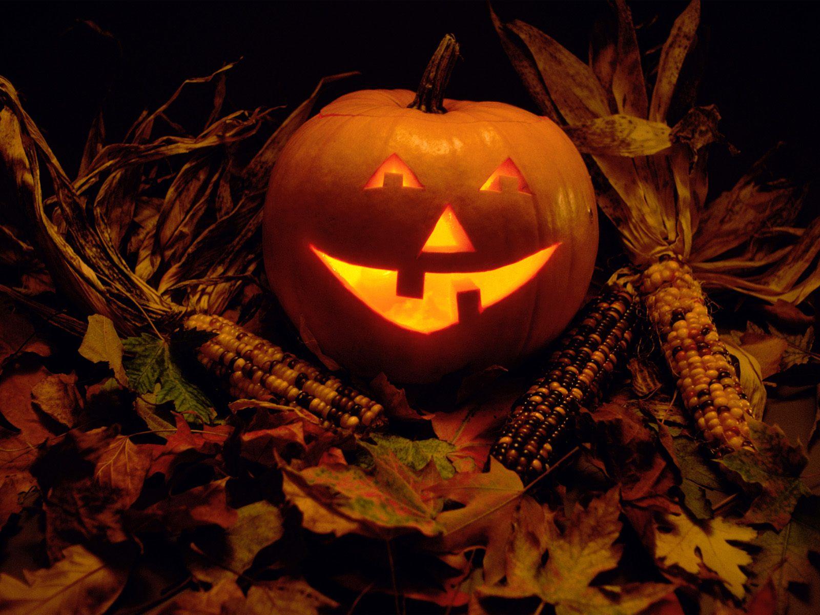 Halloween Background 1600x1200