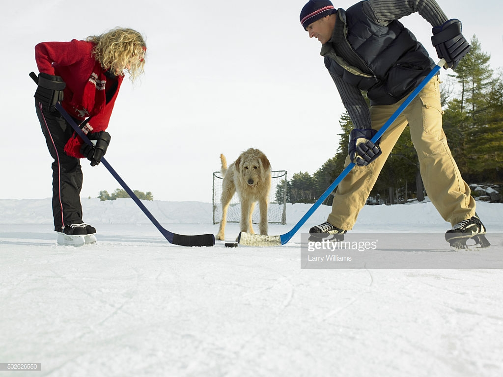 Man Girl And Dog On Ice Hockey Field Stock Photo   Getty Images 1024x768