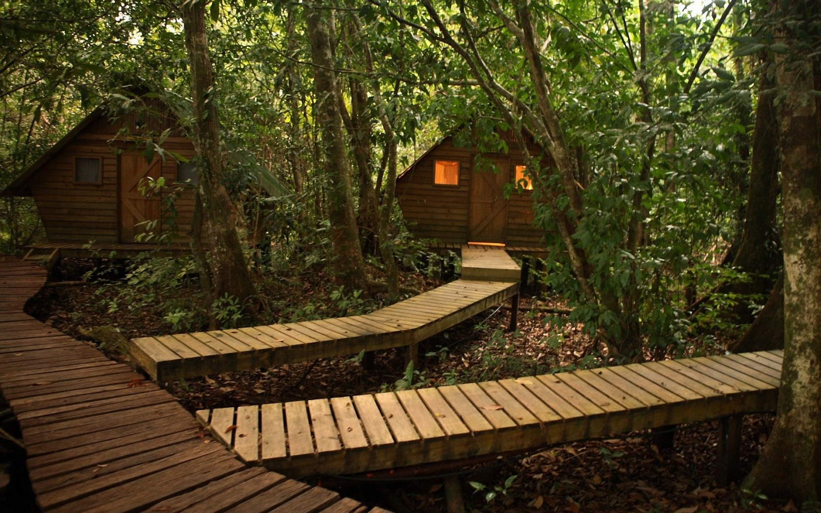 Cabin in the Forest 1680x1050 Wallpapers 1680x1050 Wallpapers 1680x1050