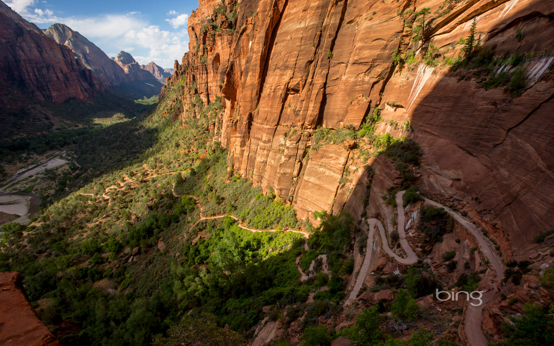 zion national park hd wallpaper wallpapersafari. Black Bedroom Furniture Sets. Home Design Ideas