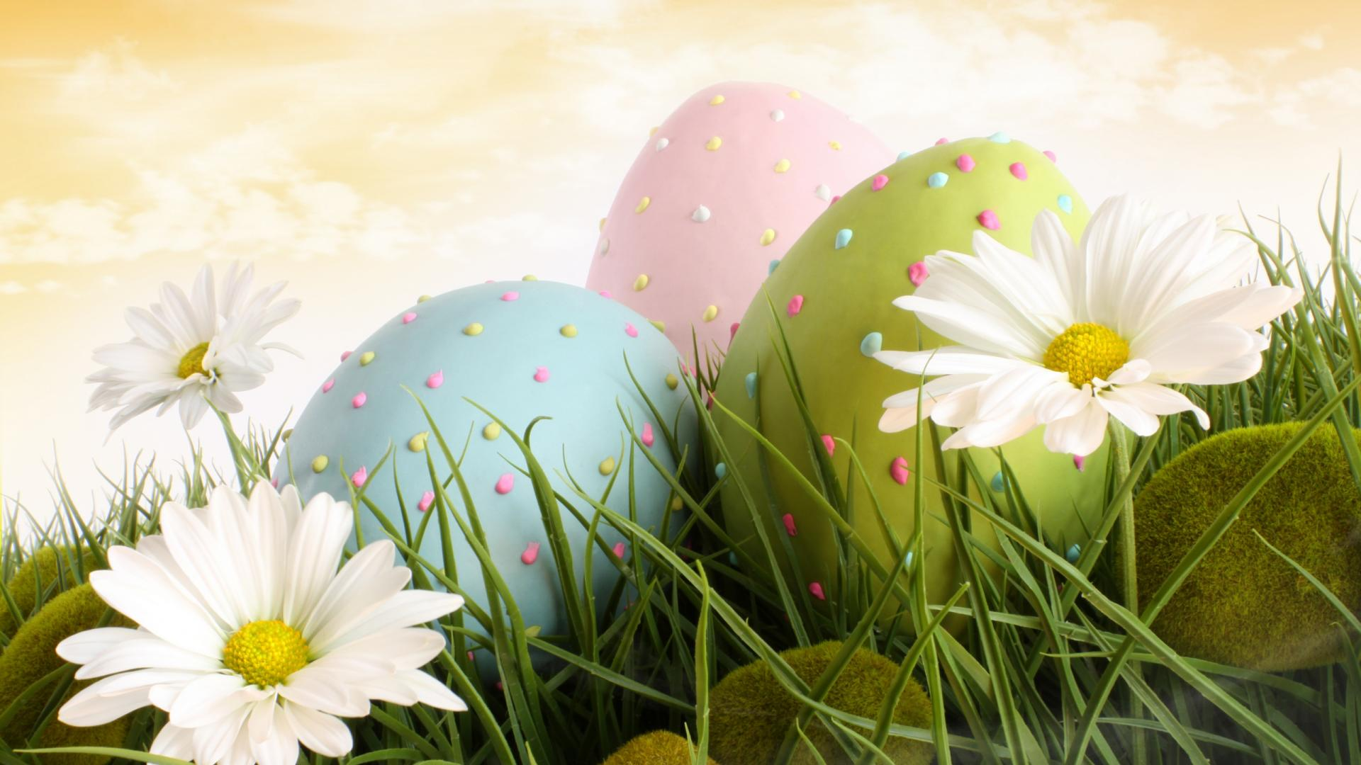 Happy Easter HD Wallpaper Background Image 1920x1080 ID 1920x1080