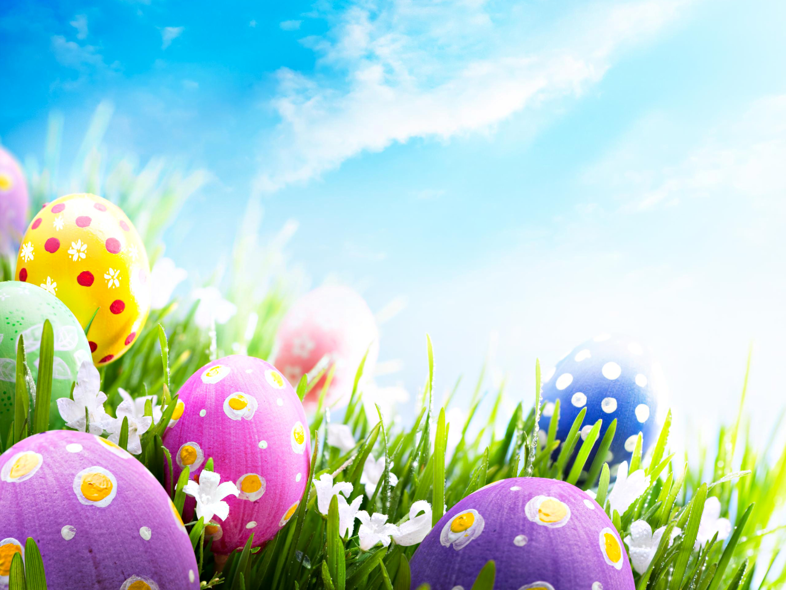 Happy Easter   Happy Easter All My Fans Wallpaper 2560x1920