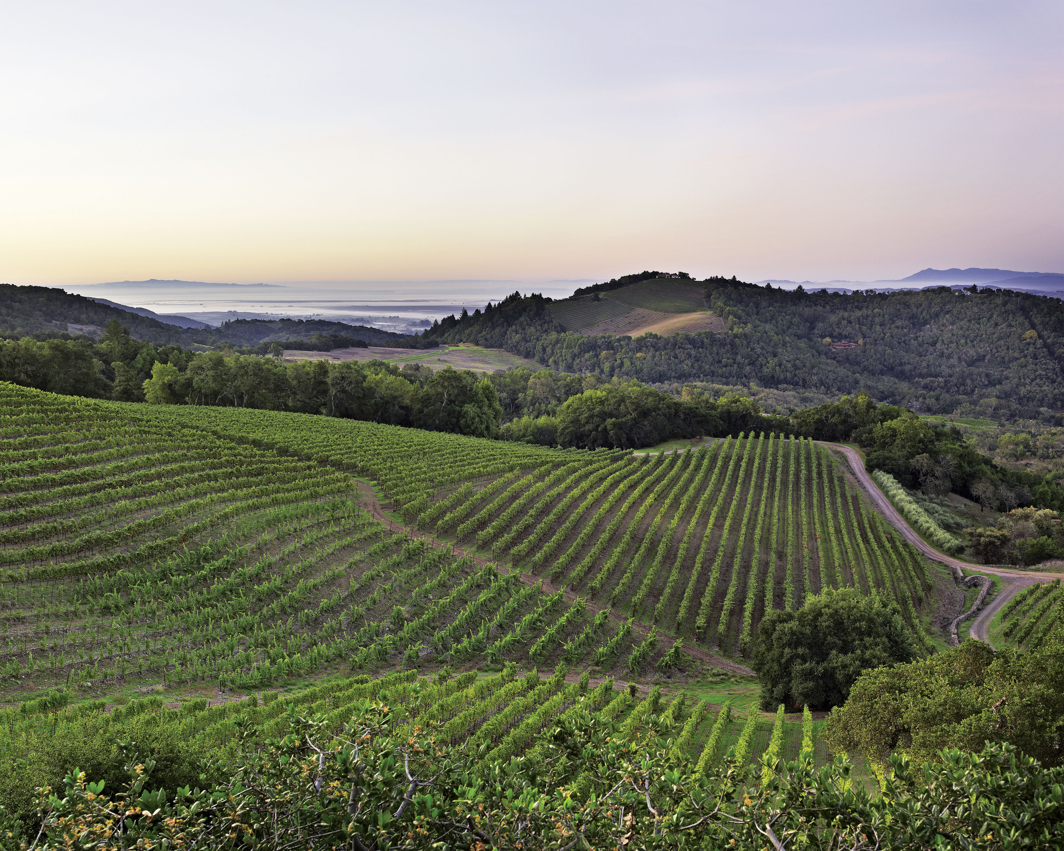 California Wine Country HD Walls Find Wallpapers 3500x2800