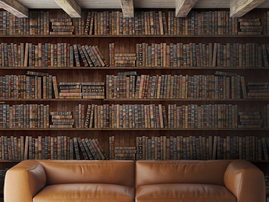 Book Shelves Wallpaper April The Bear 1024x768