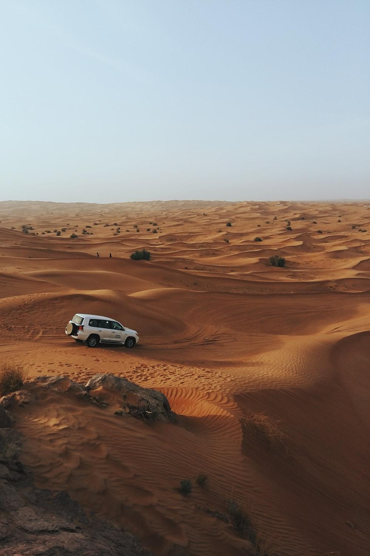 Arabian Desert Dubai United Arab Emirates Pictures Download 1000x1500