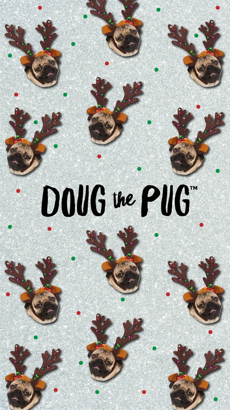 Doug The Pug Claires 750x1334