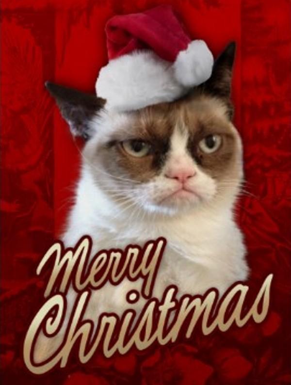grumpy cat christmas Grumpy Cat Christmas 600x794