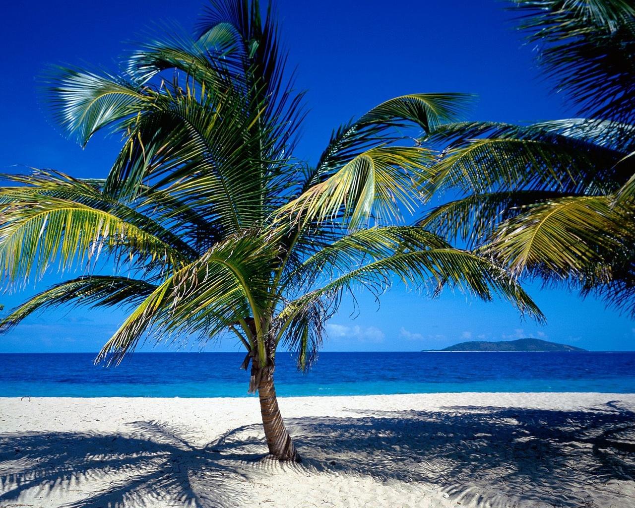 Travel Caribbean Beach Laptop Wallpaper Freetopwallpaper 1280x1024