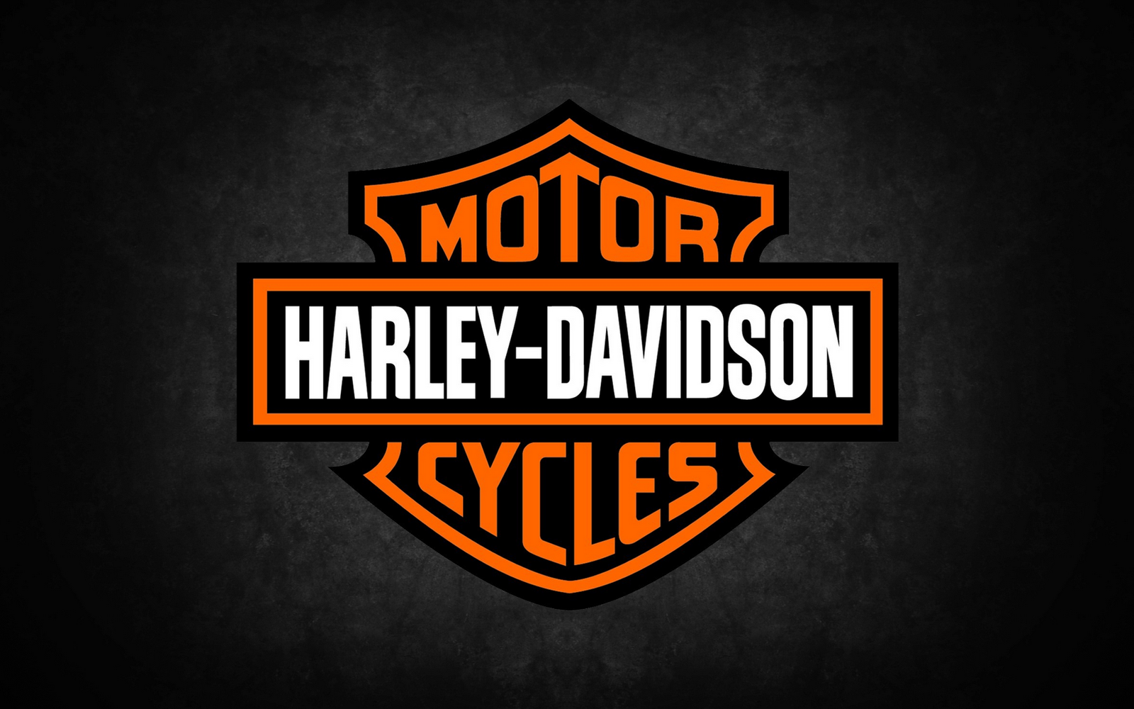 Download Harley Davidson Logo HD Wallpaper 1936 Full Size 1600x1000