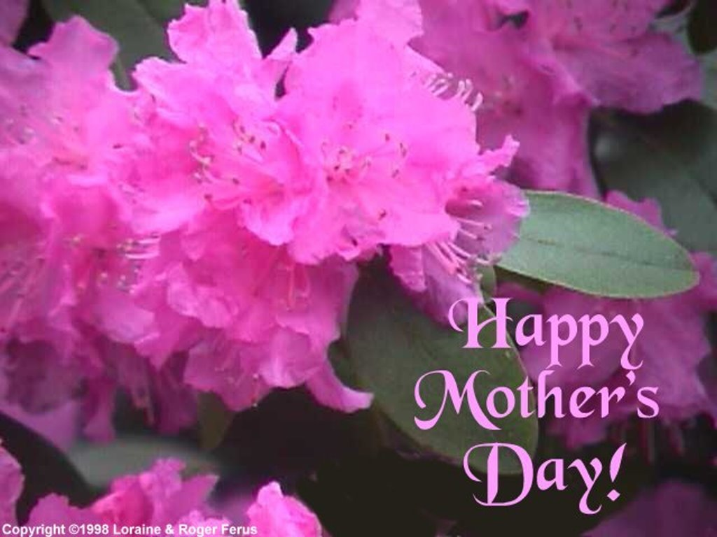 Farry Island Mothers Day Wallpapers 1024x768