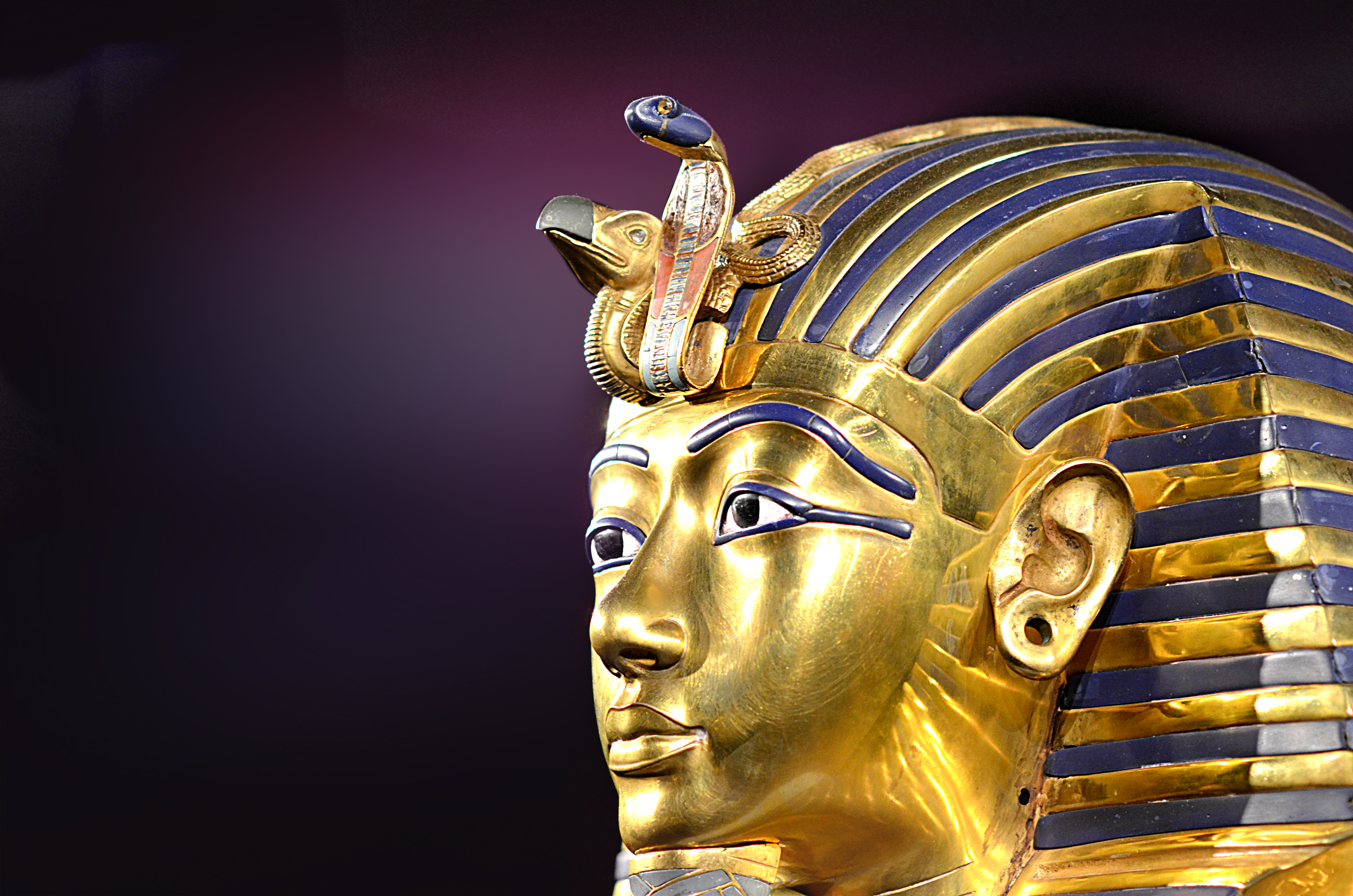Egyptian Pharaoh Wallpaper Wallpapersafari