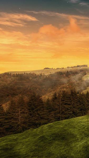 Beautiful Autumn iPhone 6S Plus Wallpaper 338x600