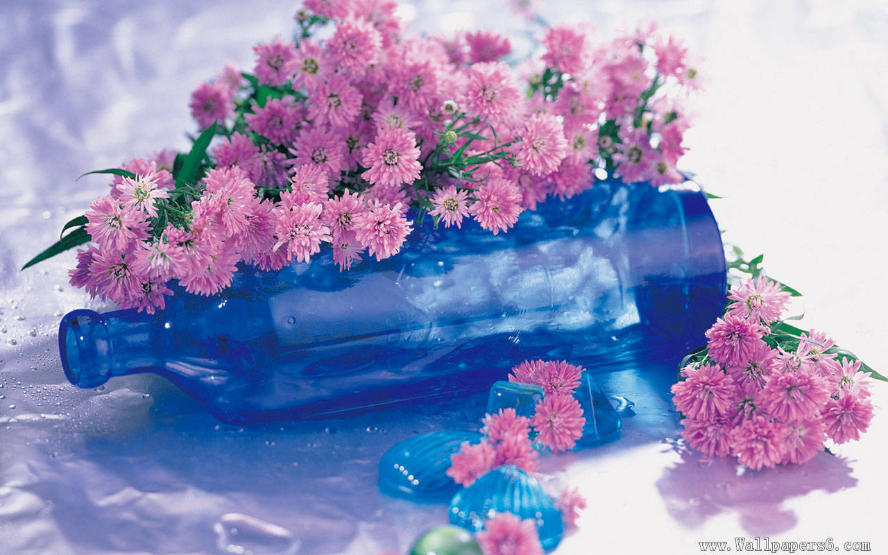 Wallpaper Pink And Blue Flowers Wallpapersafari