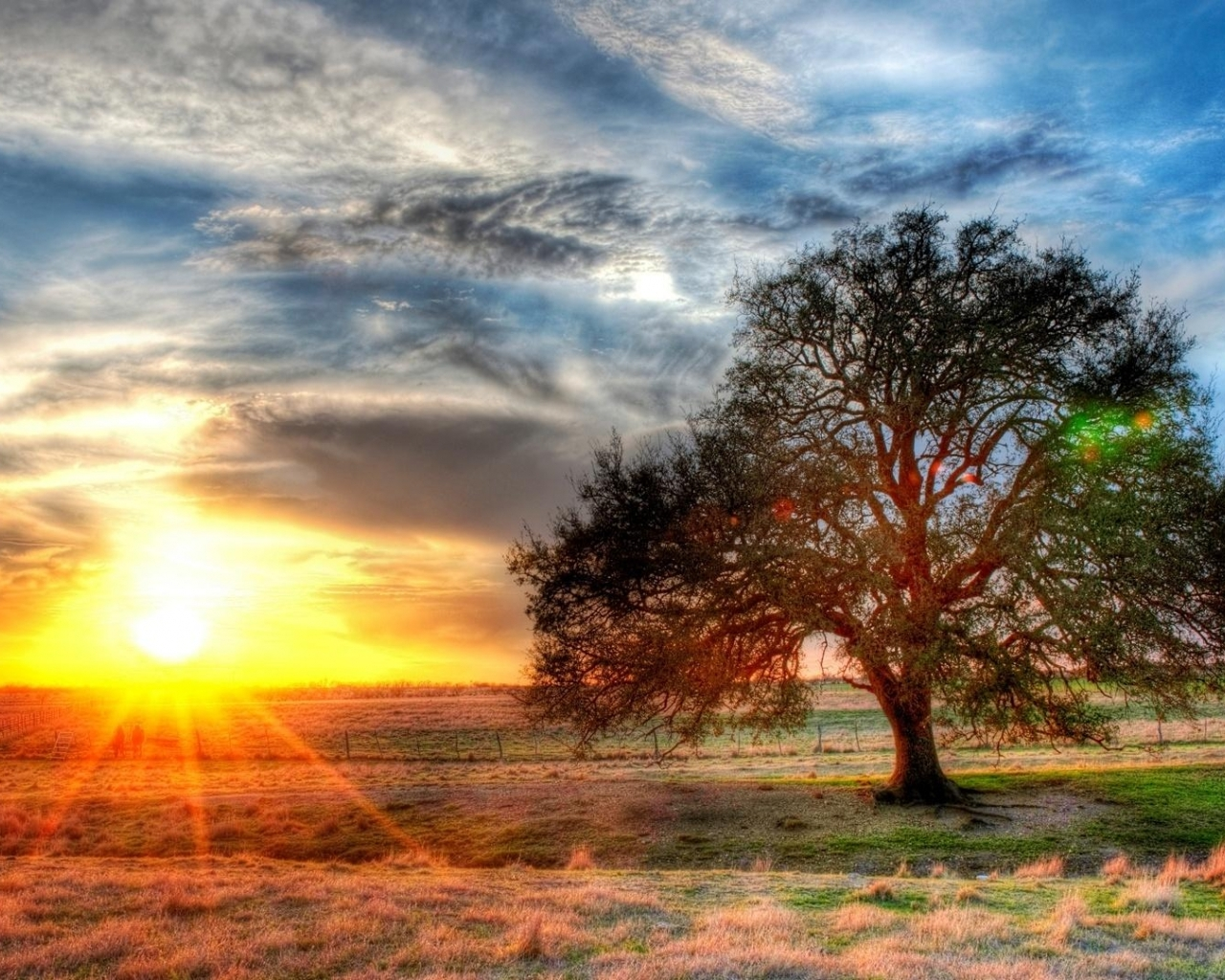 Sunset on a Texas farm Hdr wallpaper 1280x1024