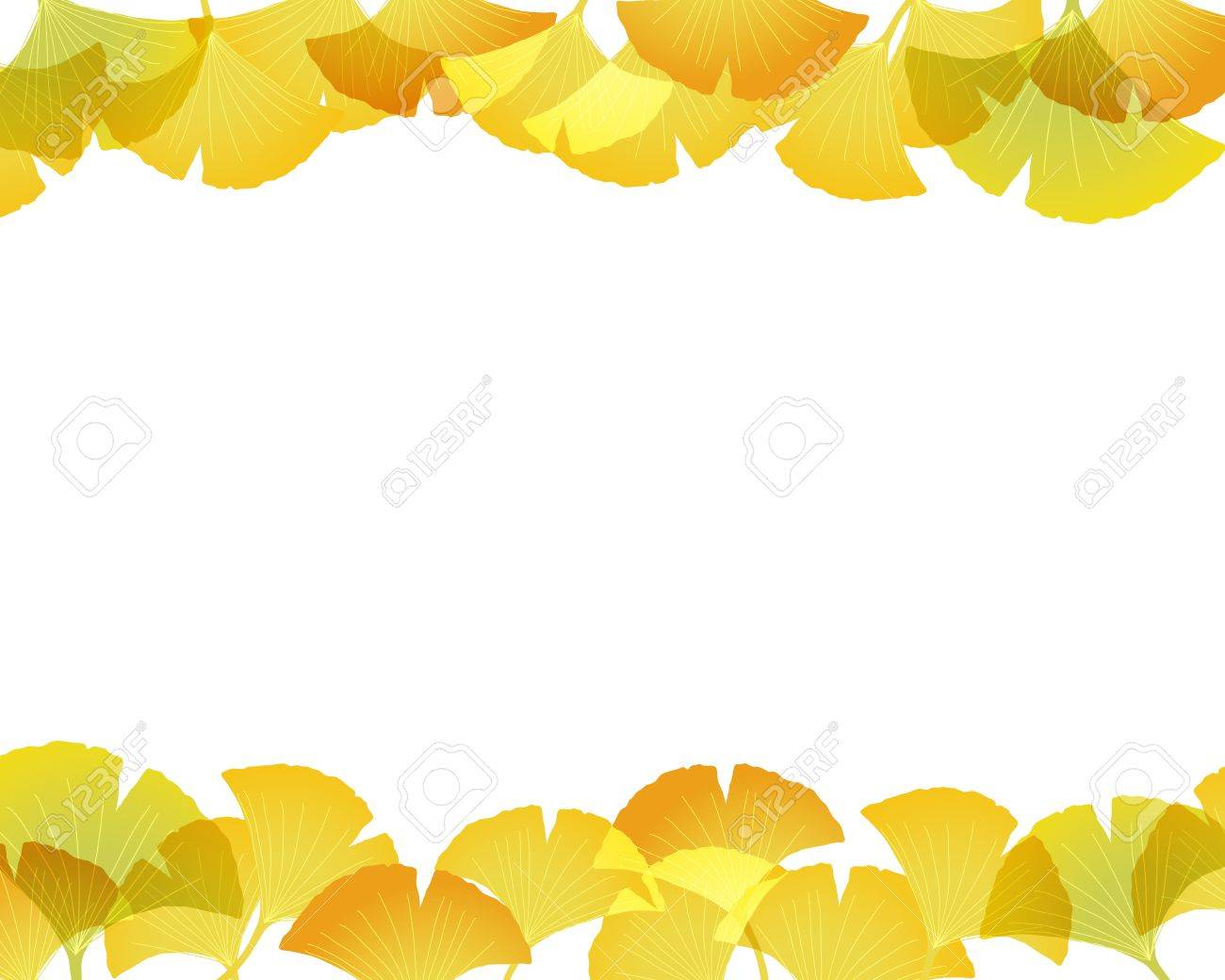Ginkgo Background Royalty Cliparts Vectors And Stock 1300x1040