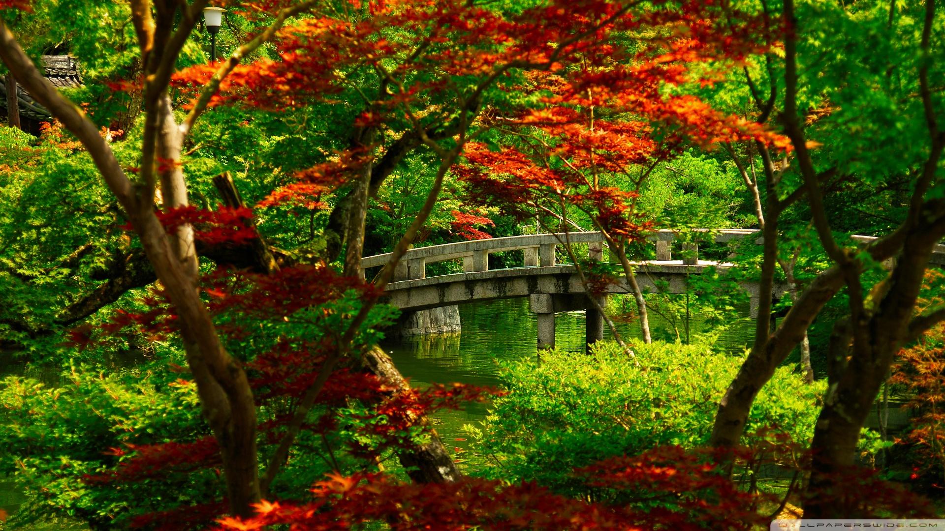 Download Japanese Garden Kyoto Wallpaper 1920x1080 1920x1080