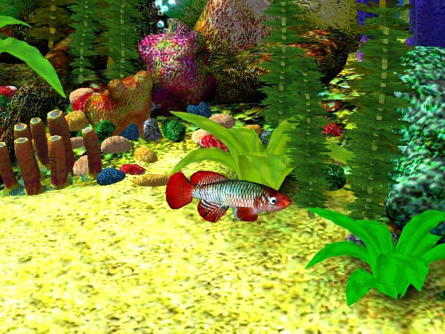 3D Aquarium Screensaver Download   3D Aqua Screensaver 640x480