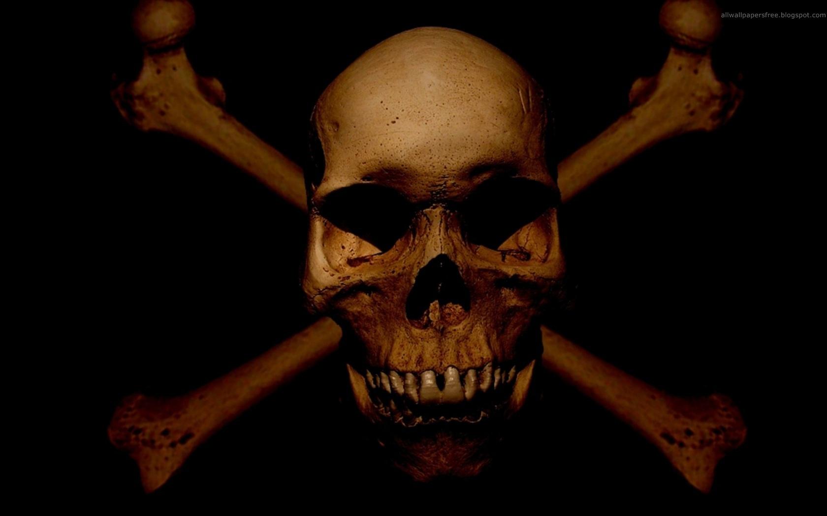 Skull and Bones wallpaper   ForWallpapercom 1680x1050